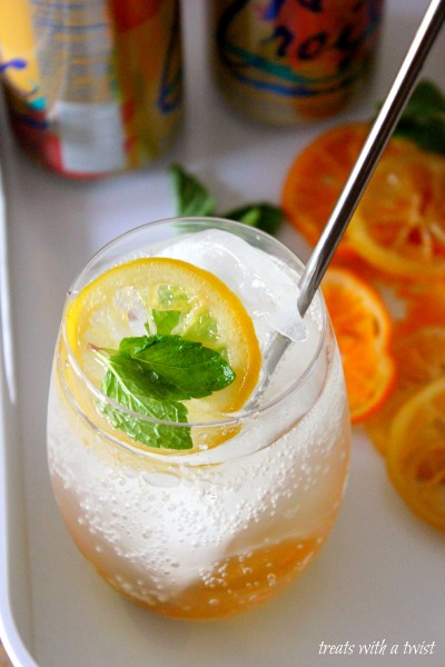 Candied Citrus Slices and a Citrus Fizz Cocktail - Treats With a Twist